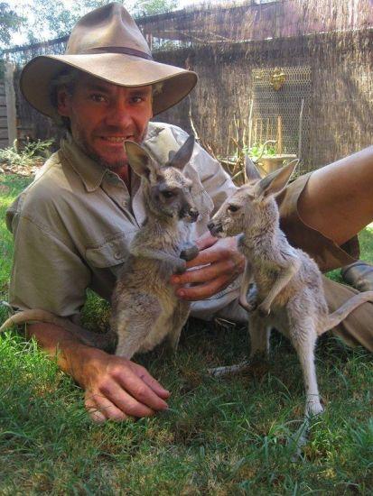 Kangaroos - Human 07